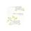 Faire-Part Mariage Traditionnel - Papillons Anis, Arabesque grise 15293 thumb