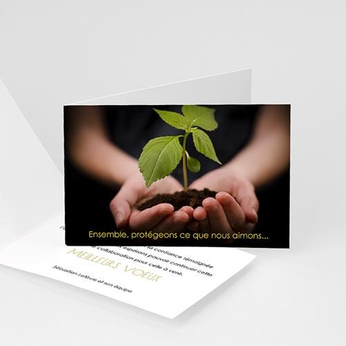 Cartes de Voeux Professionnels - Bel avenir 23451