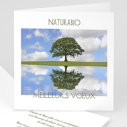 Cartes de Voeux Professionnels - Préservons la nature 2530