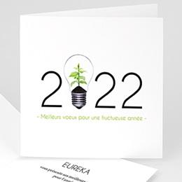 Cartes de Voeux Professionnels - Idée verte - 1