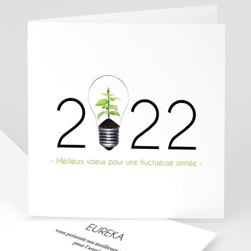 Cartes de Voeux Professionnels - Idée verte 35746
