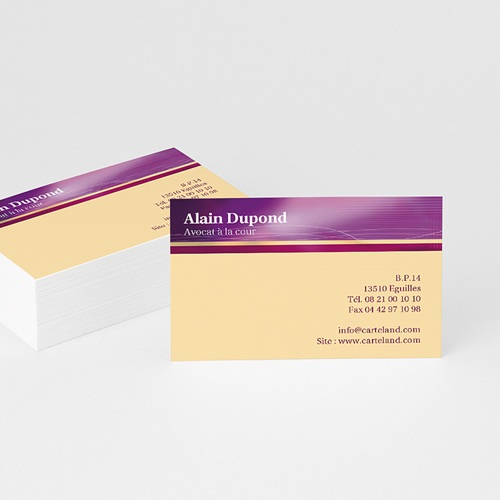 Carte de Visite - Carte visite - orange et violet 4881