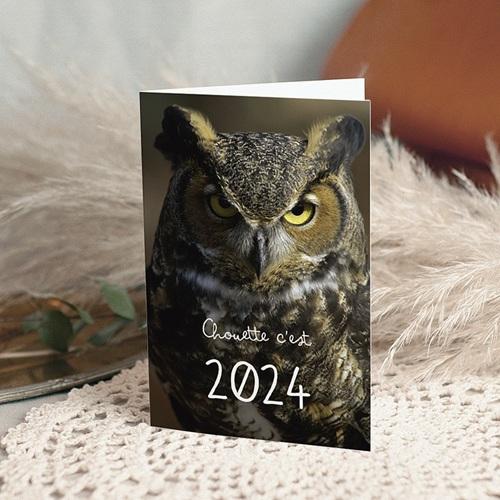 Cartes de Voeux Professionnels - Année Chouette 50063