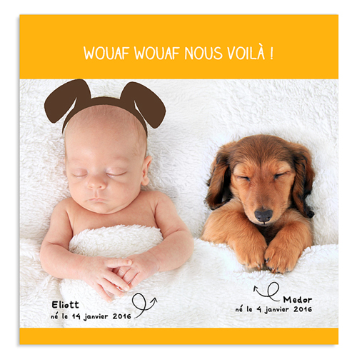 faire part naissance avec animaux pour b b. Black Bedroom Furniture Sets. Home Design Ideas