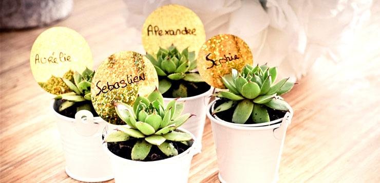 Cadeaux invit s de mariage 5 id es for Acheter des plantes en ligne