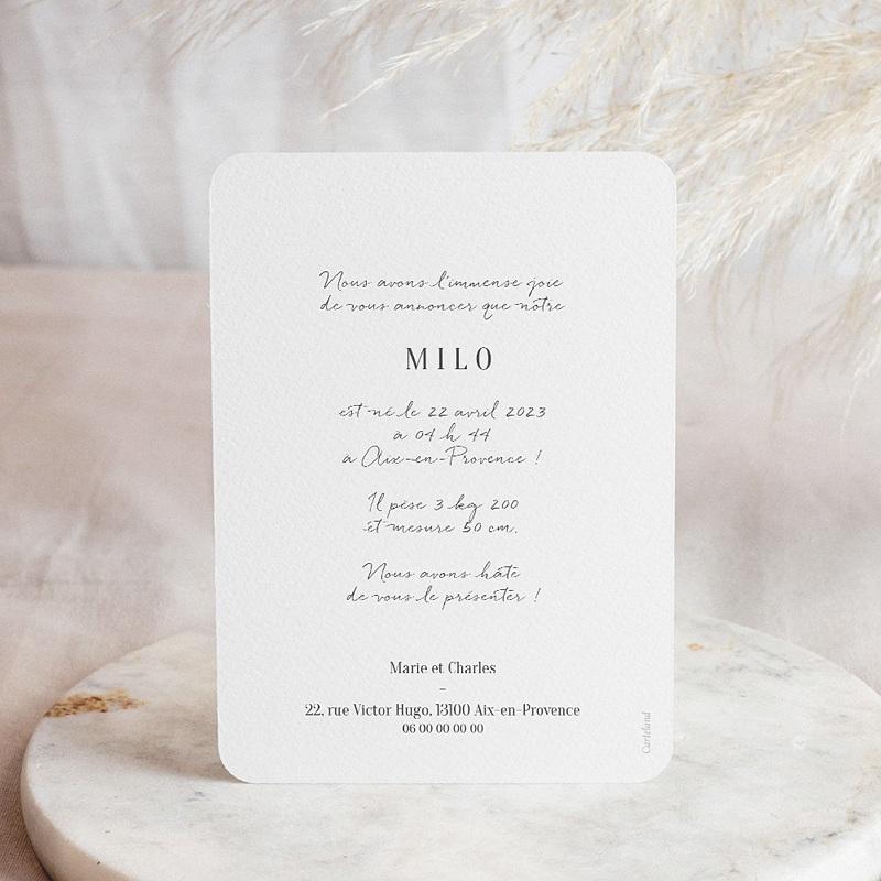 Faire-Part Naissance Milo, Tons Pastel, 12,7 x 17,7 cm pas cher