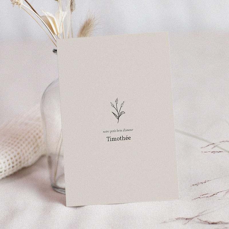 Faire-Part Naissance Timothée, beige clair