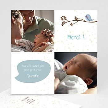Acheter carte remerciement naissance garçon piou piou - bleu