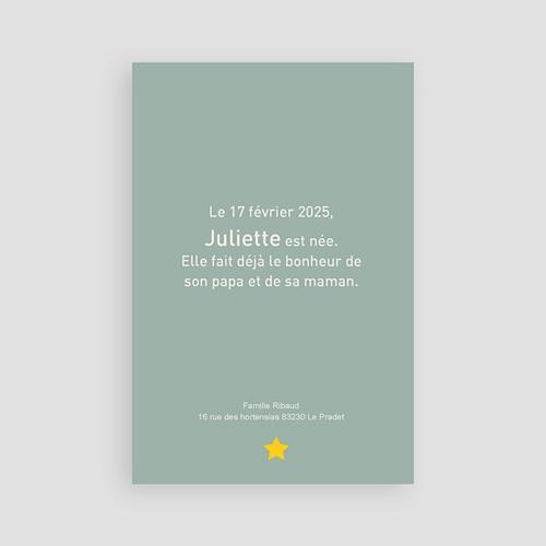 Faire-Part Naissance Fille - Cigogne fille 15523 thumb