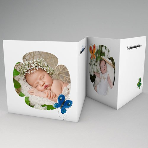 Archive - La fleur bleue du papillon 16309 preview