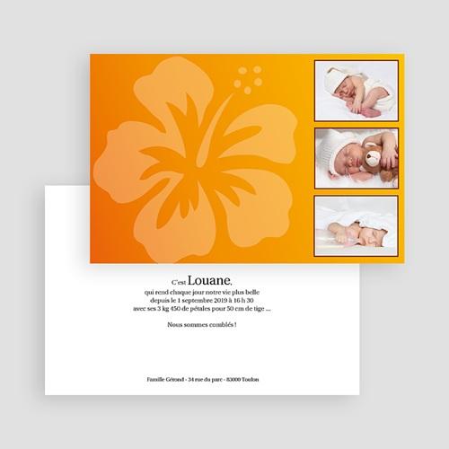 Archive - Une fleur jaillit... 17734 preview