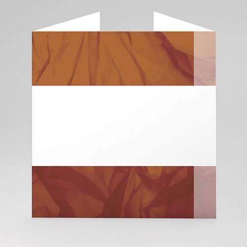 Archive - Carte mémoire marron -2 21342 preview