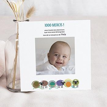Acheter carte remerciement naissance fille moutons pelotes