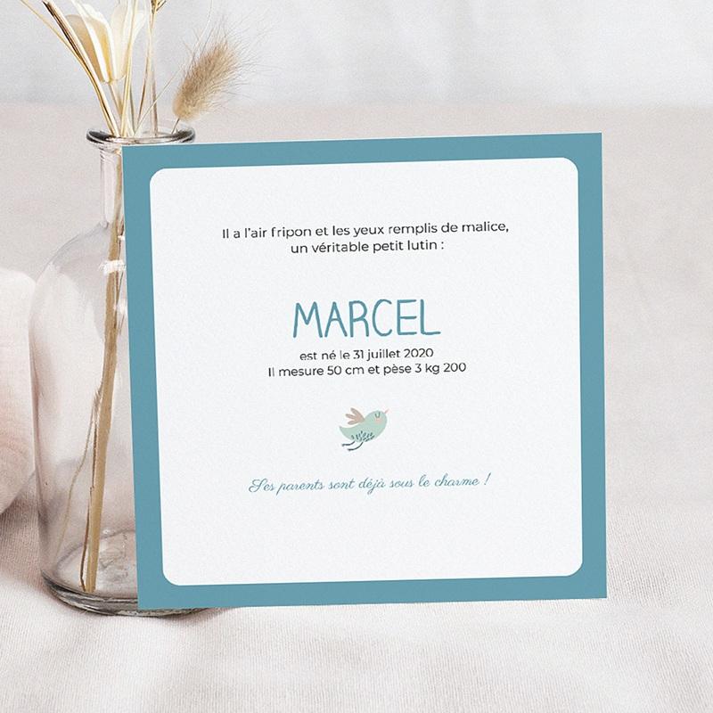 Faire-Part Naissance Garçon - Trop chou bleu 2277 thumb