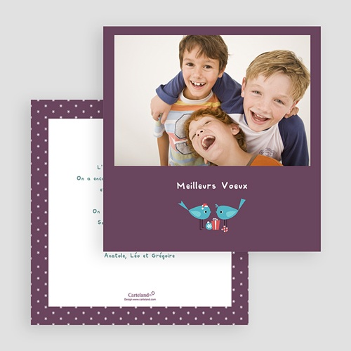 Carte de Voeux 2018 - Oiseaux turquoise 22867 thumb