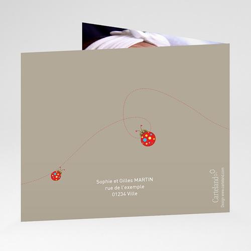 Faire-Part Naissance Fille - Coccinelle Peps 22980 preview