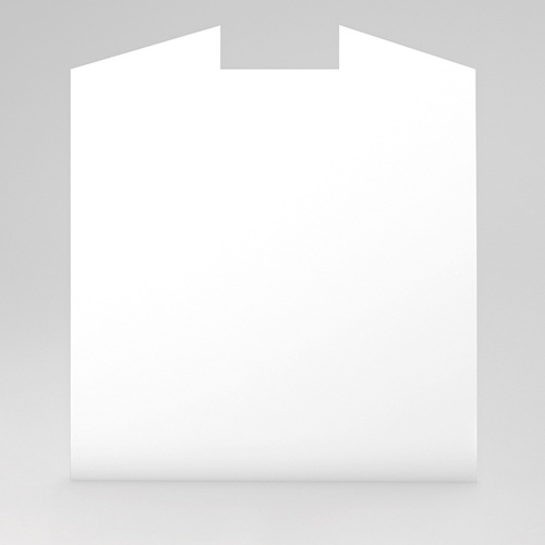 Cartes de Voeux Professionnels - Voeux 100% création 23332 preview