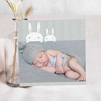Tous les faire part de naissance coeur de lapin fille