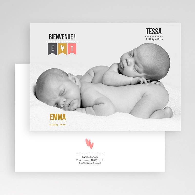 Faire-part naissance jumeaux Photo Jumeaux gratuit