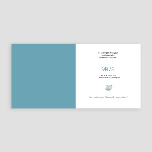 Faire-Part Naissance Garçon - Lovinou - bleu 24980 thumb