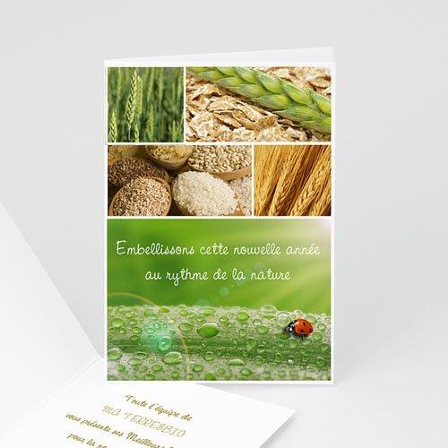 Cartes de Voeux Professionnels - Nature 2514