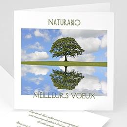 Voeux Pro Nouvel An Préservons la nature
