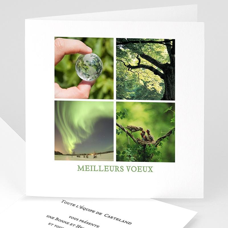 Carte de Voeux Professionnelle - Terre Eau Air Feu 2736 thumb