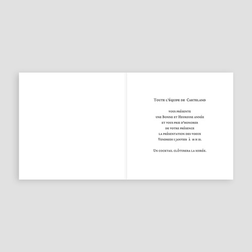 Carte de Voeux Professionnelle - Terre Eau Air Feu 2737 thumb