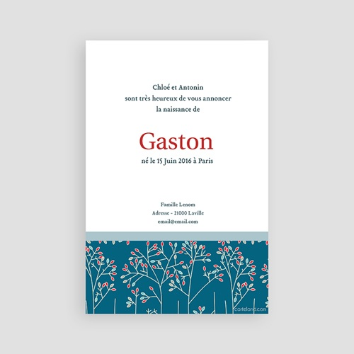 Faire-Part Naissance Garçon - Gaston 2857 thumb