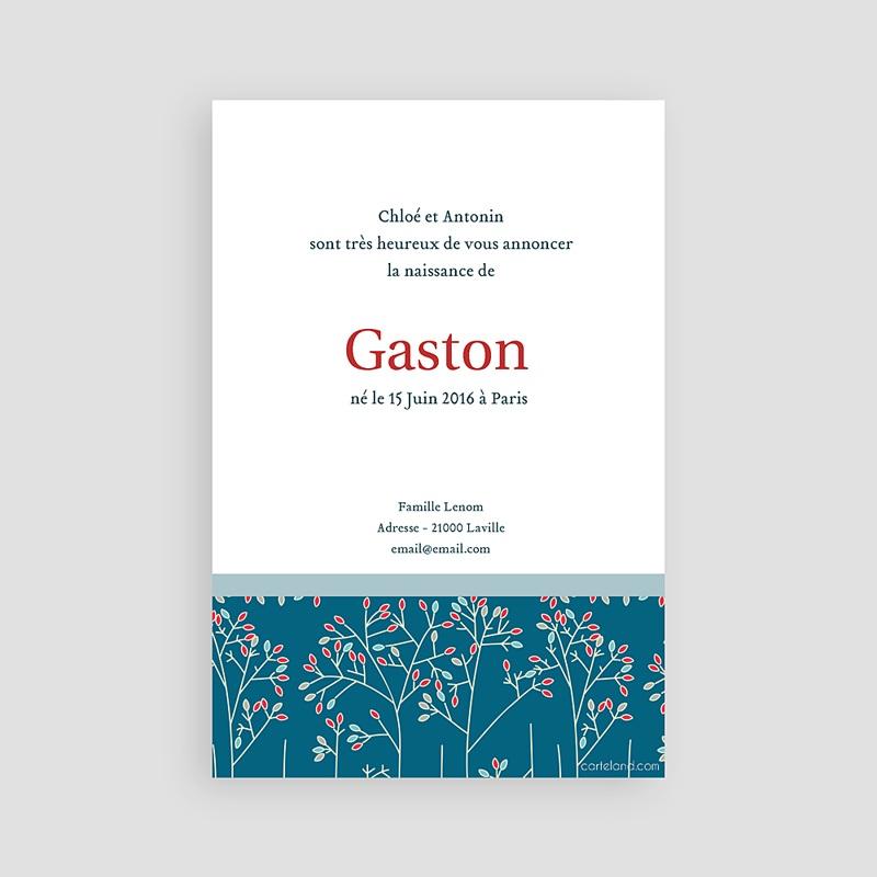 Faire-part naissance garçon Gaston pas cher