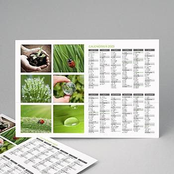 Calendrier photo entreprise 2020 - Année verte - 1