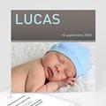 Lucas - 3