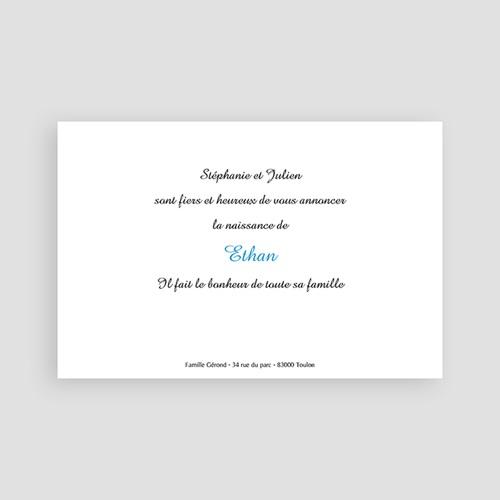 Faire-Part Naissance Garçon - Bandeau fleuri bleu 4029 preview
