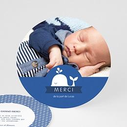 Carte remerciement naissance garçon Baleineau