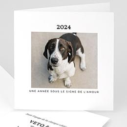 Carte de voeux entreprise Vétérinaire
