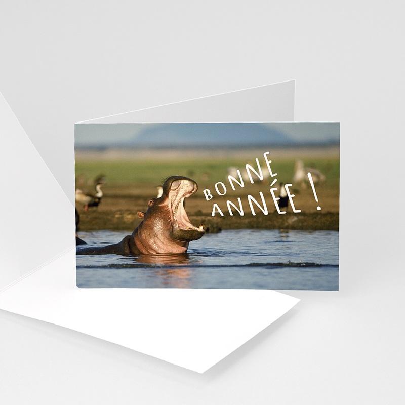 Carte de Voeux Entreprise Hippopotame