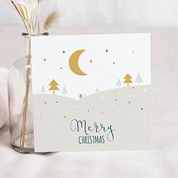 Voeux Nouvel An Paysage de Noel