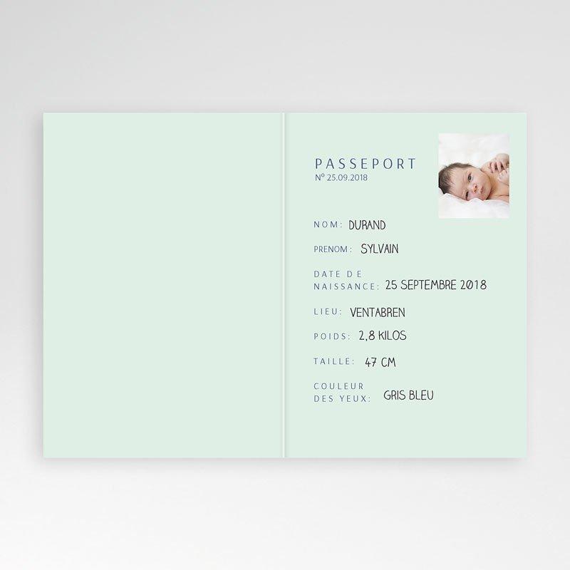 Accueil Passeport bleu pas cher