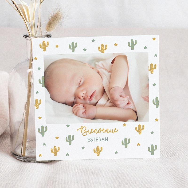 Faire-part naissance garçon Cactusland