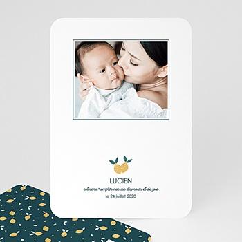 Faire-part naissance garçon - Lemon tree - 0