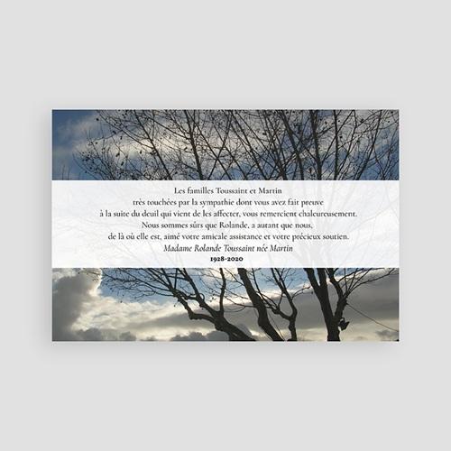 Carte Remerciement Décès Universel L'arbre de lumière pas cher