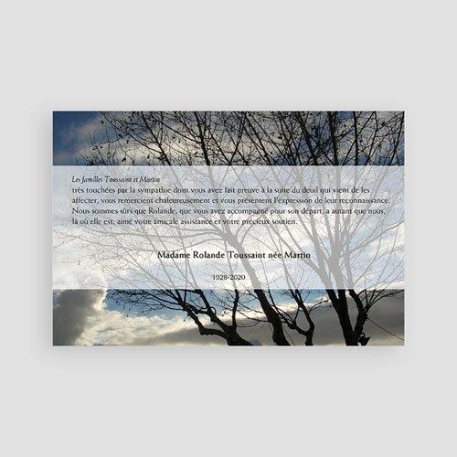Remerciements Décès Universel - L'arbre de lumière 65760 thumb