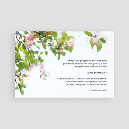 Remerciements Décès Universel - Roses immortelles 65764 thumb