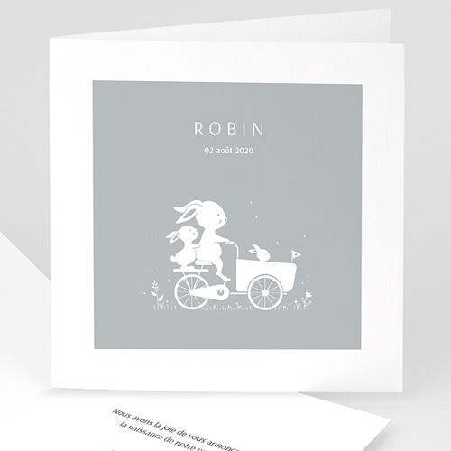 Faire-Part Naissance Lapin A bicyclette avec bébés lapins