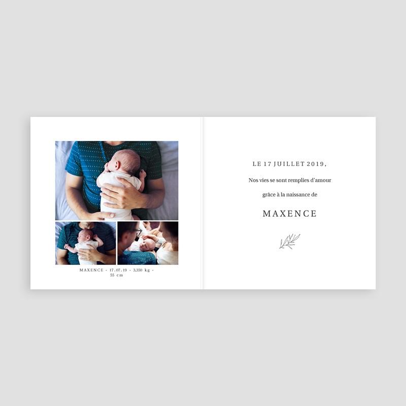 Faire-Part Naissance classique - Foxy 72423 thumb