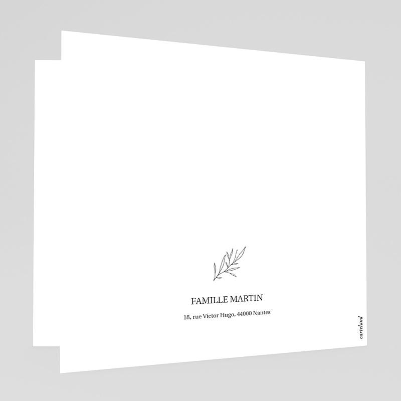 Faire-Part Naissance classique - Foxy 72424 thumb