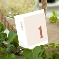 Marque Table Mariage Terracotta