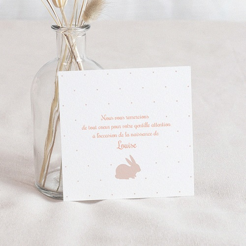 Carte Remerciement Naissance Fille Lapin Vintage Rose
