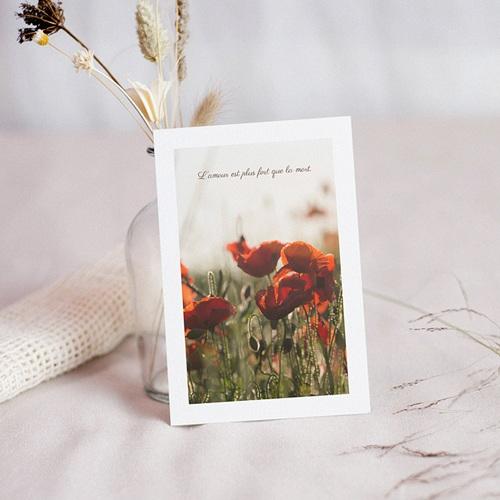 Carte Condoléances Fragiles Coquelicots, 10 cm x 14 cm
