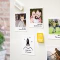 Magnet Photo Souvenirs Photos, lot de 12 pas cher